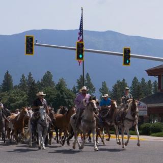 Heritage Days - Freedom Bank Wild Horse Drive
